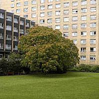 Einweihung der neu gestalteten Infektionsstation im Evangelischen Krankenhaus Köln-Weyertal