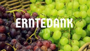 Erntedankfest – ein Tag für Schöpfung, nachhaltiges Wirtschaften und Gerechtigkeit