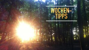 Wochentipps: Live-Musik und Reibekuchen in Worringen, Friedensinitiative in Mülheim, Friedhofsbesichtigung in Bocklemünde und Sommergespräche in Brühl